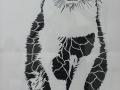 duofox-matias-picon-gato