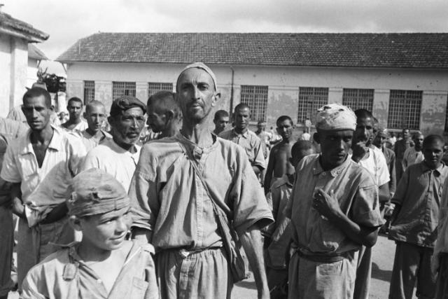 duofox-holocausto-brasileiro
