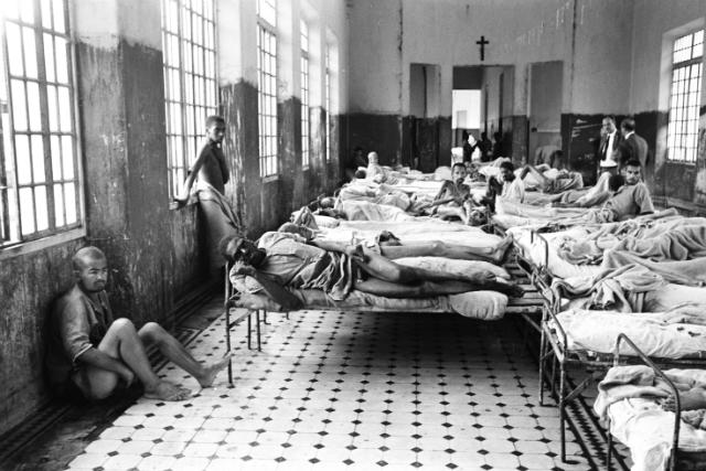 holocausto-brasileiro-duofox