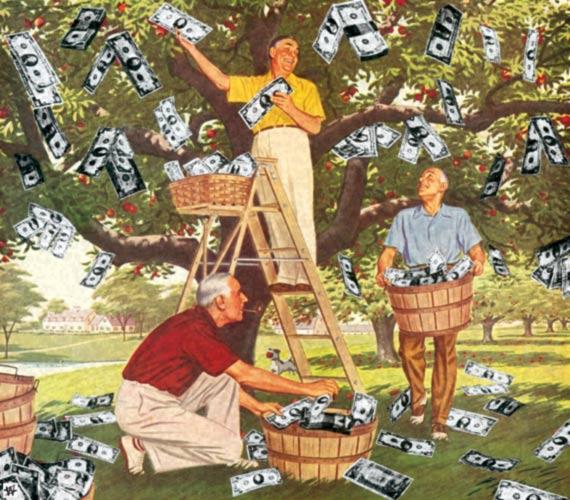 money-tree-original